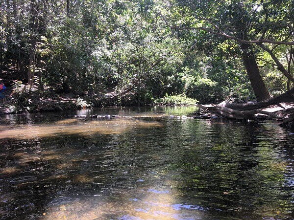 Calm pools and river at the Llanos de Cortes waterfall.